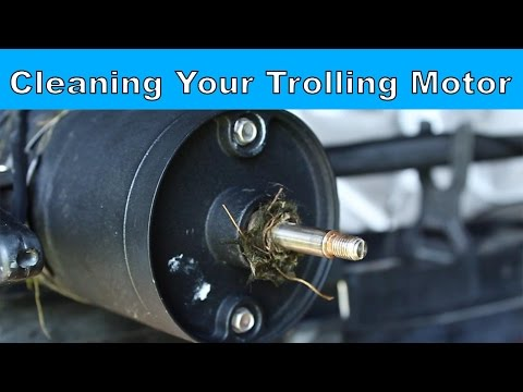 How to Clean Your Trolling Motor Prop