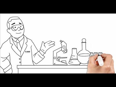 Basics of Polyurethane