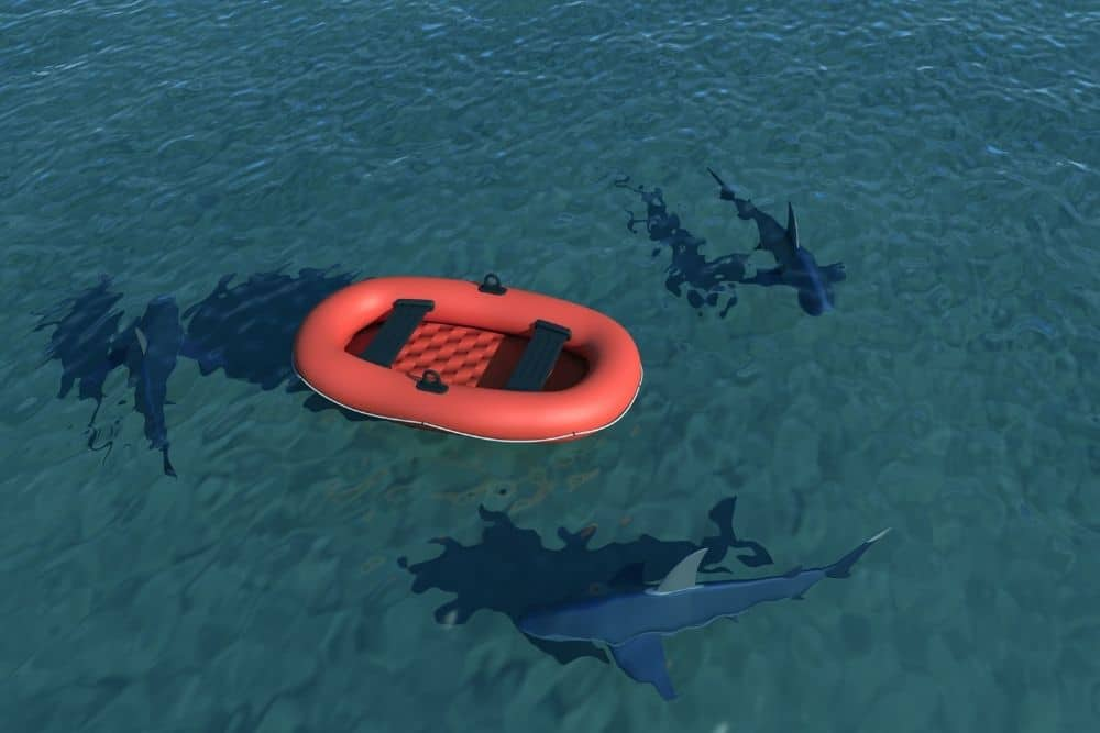 sharks vs red inflatable boat floating on the sea